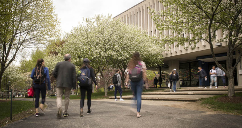 students and faculty walk down path by library