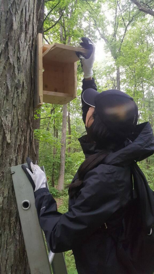 Researchers at Merrimack College are trying to determine whether there are flying squirrels on ca...