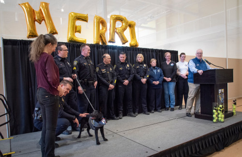 The Merrimack community celebrated the College's new comfort dog Merri on March 3.